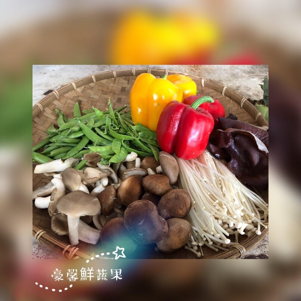 飲食管理套組(大)__不含肉品及香料加購