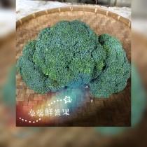 綠色花椰菜