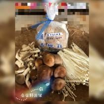 小菇菇家族(含有4種菇類)